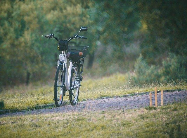 električna kolesa giant